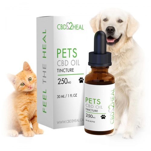 CBD2Heal CBD Oil for Dogs & Pets 250mg